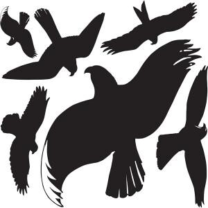 Warnvogel Avery Zweckform 4485 - schwarz ablösbar wetterfest Pckg/6